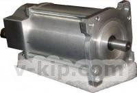 Вентильный электродвигатель с двухканальным регулятором скорости фото 1