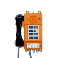 Телефонный аппарат ТАШ-11П-IP-С - фото
