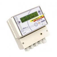 Счетчик жидкости двухканальный накладной ультразвуковой Эргомера - 125.БН фото 1