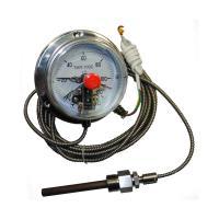 Термометры капиллярные (электроконтактные) ТМП-100С фото 1
